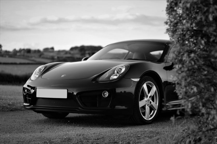 porsche plate edit farm bw