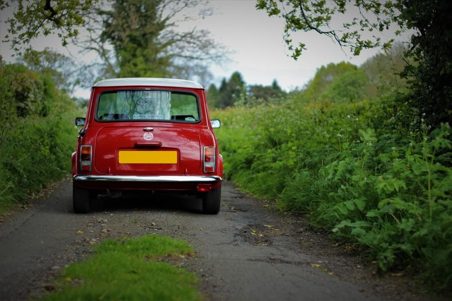 mini rear (2)